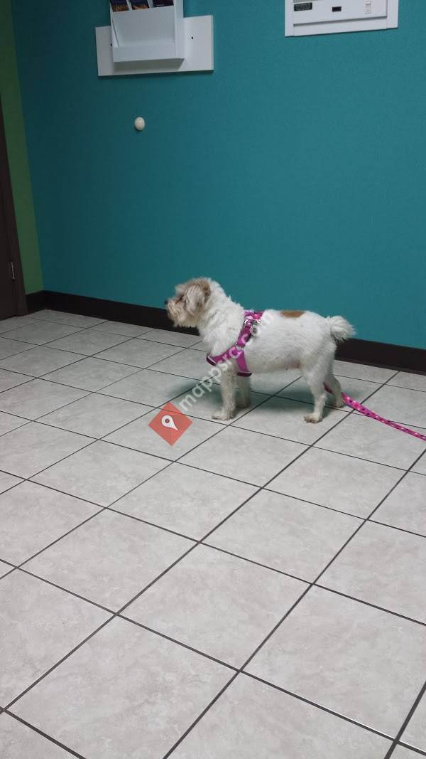 Flora Veterinary Clinic
